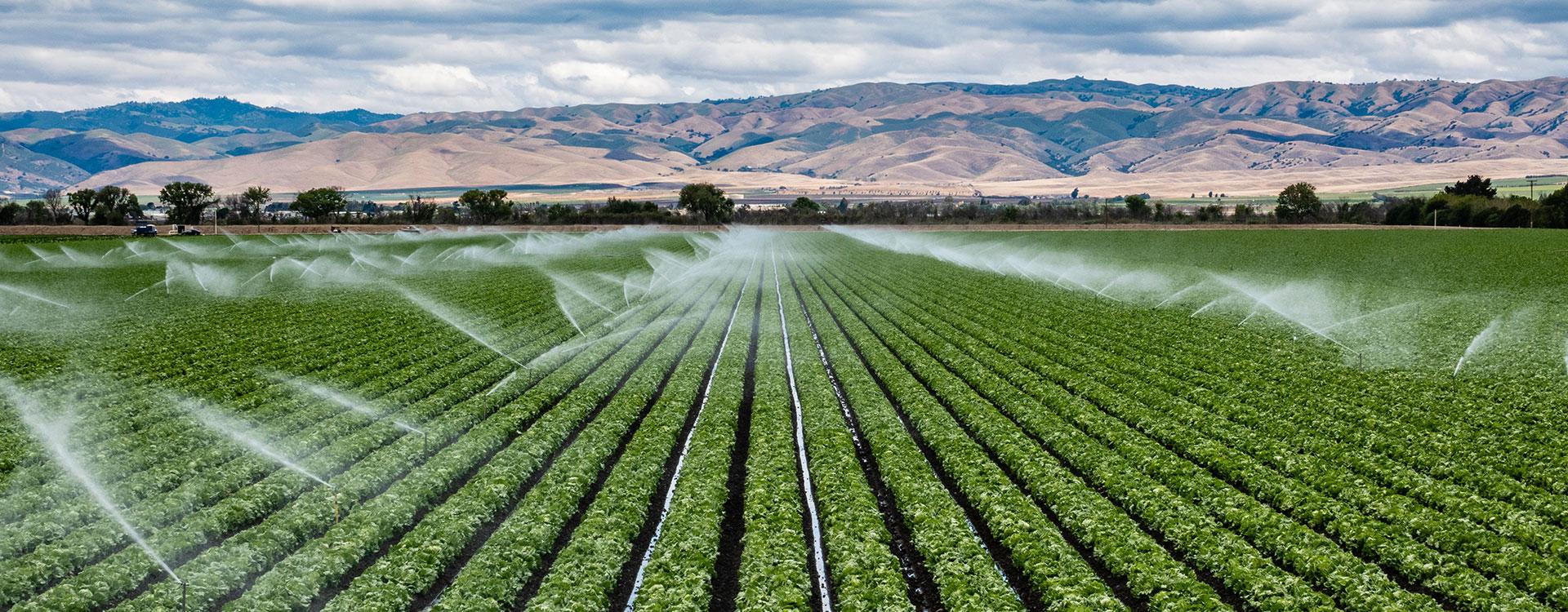 slider-irrigation